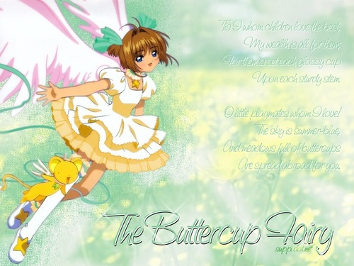 Cardcaptor Sakura پیپر وال probably with a neonate, عملی حکمت, and a portrait entitled Sakura