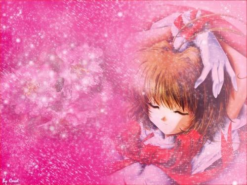 Cardcaptor Sakura پیپر وال called Sakura