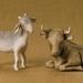Sheep and Ox