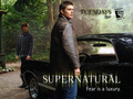 Supernatural Wallpaper - horror-and-sci-fi-television wallpaper