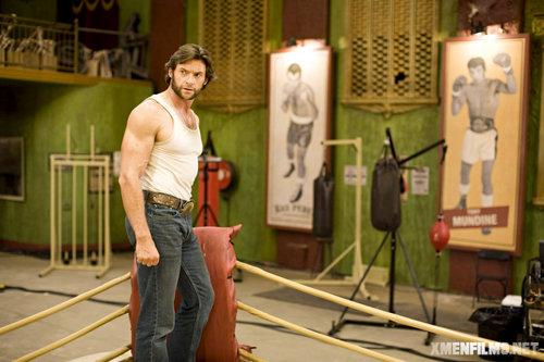 Wolverine Stills