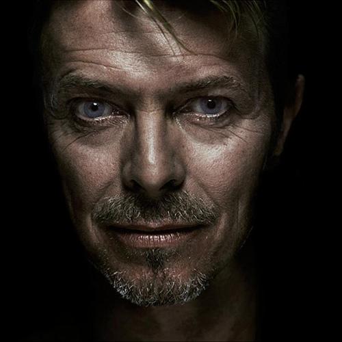 David Bowie fan art