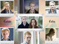 wallpapers - twilight-series photo