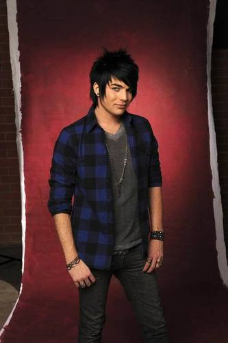 American Idol wallpaper with a well dressed person called Adam Lambert
