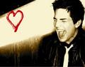 Adam Lambert - american-idol photo