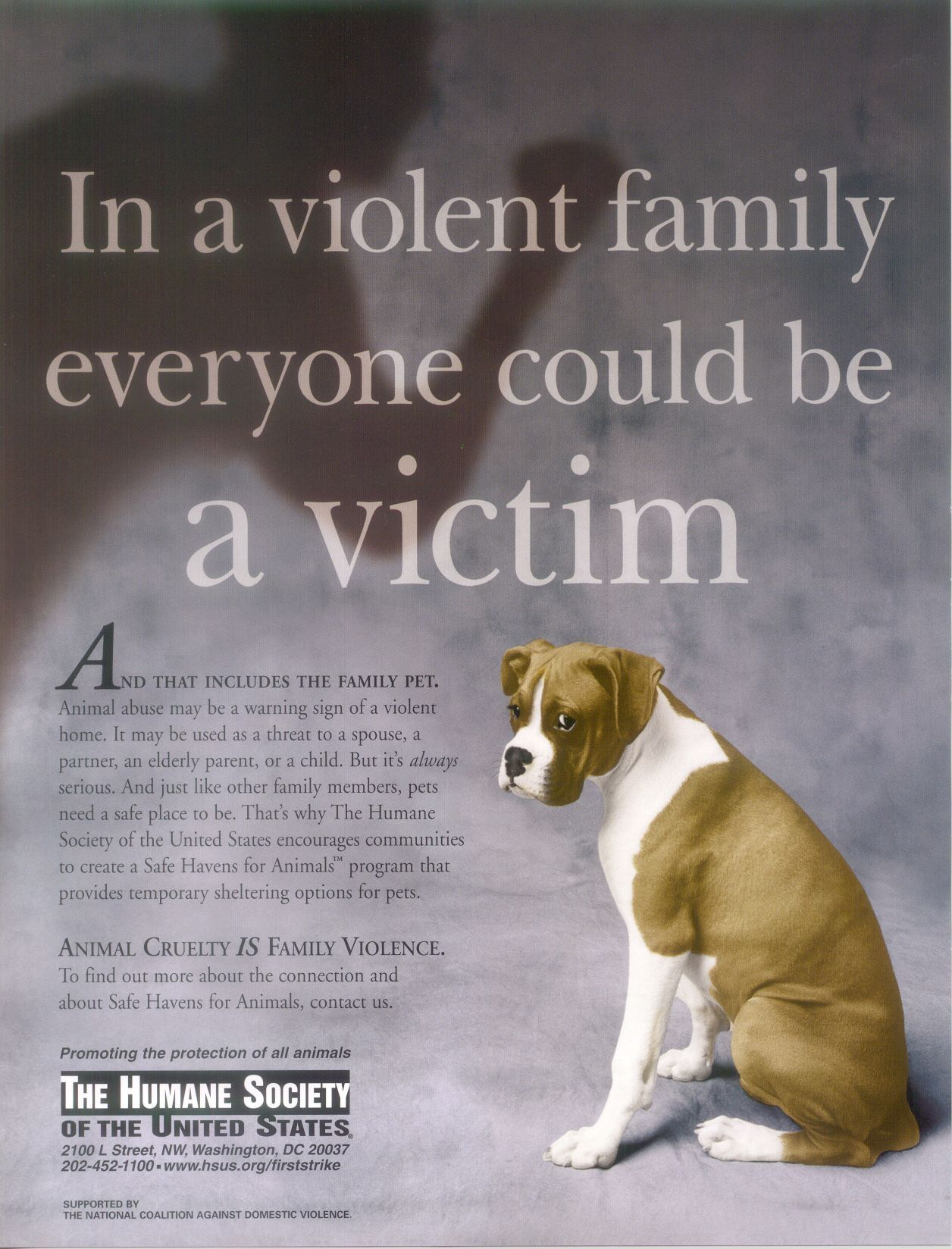 Against animal cruelty animal abuse