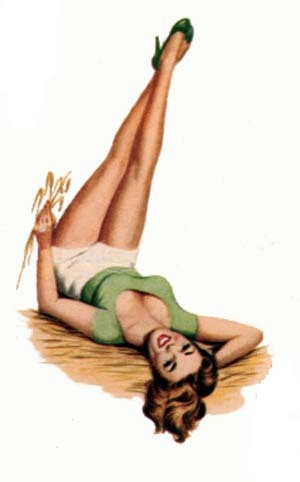 pin up girl wallpaper possibly with skin called Biba