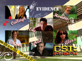CSI Miami - csi-miami fan art