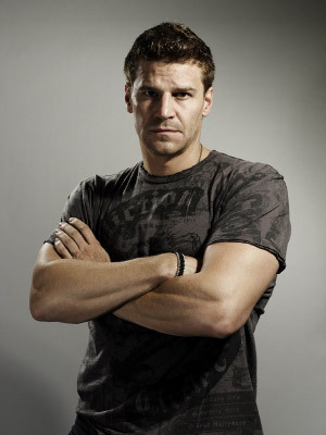 david boreanazagente seeley booth
