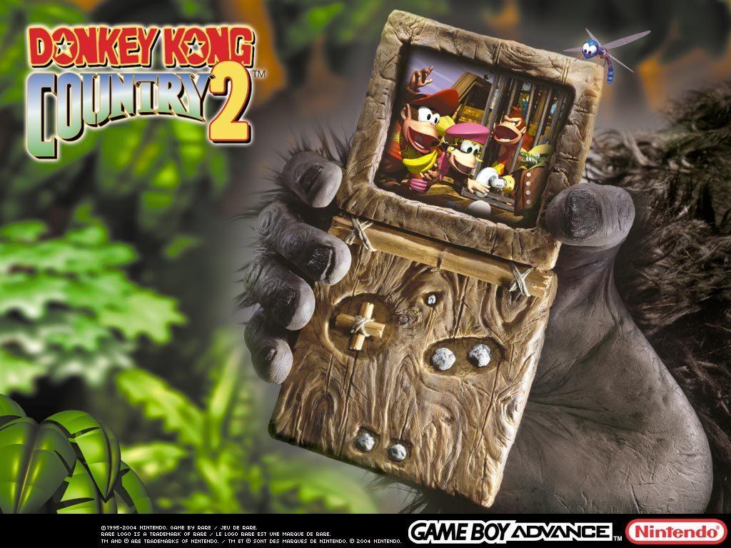 Donkey Kong rocks!