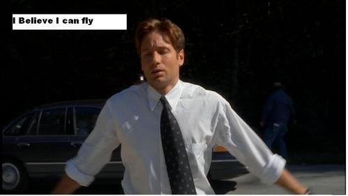 FLY (from Detor)