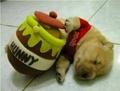 Funny 狗