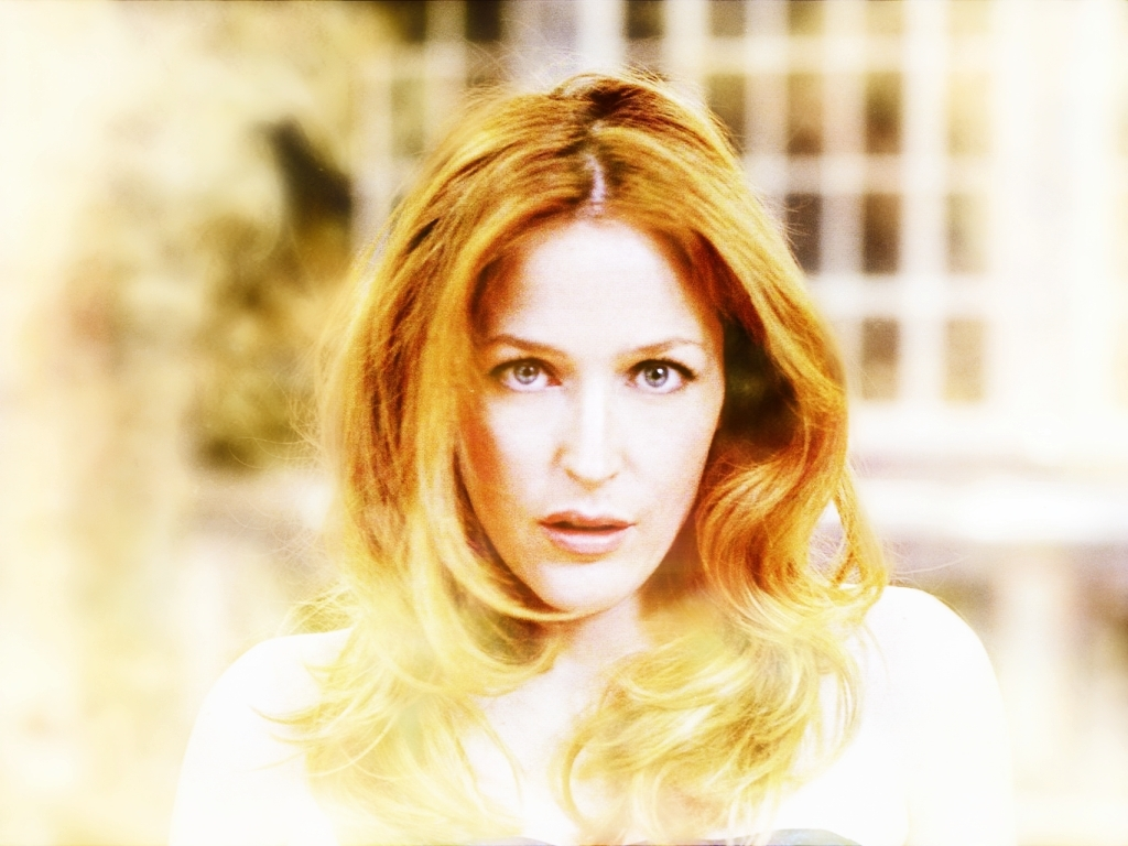 http://images2.fanpop.com/images/photos/5400000/Gillian-gillian-anderson-5495280-1024-768.jpg