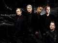 ncis - Men of NCIS wallpaper