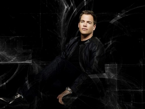 Michael Weatherly wallpaper possibly with a cloak entitled Michael
