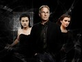 ncis - NCIS Gibbs and the girls wallpaper