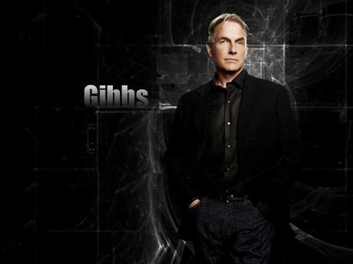NCIS wallpaper containing a well dressed person and a business suit entitled NCIS Gibbs