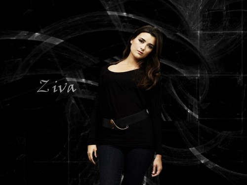 NCIS Ziva - ncis Wallpaper