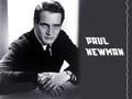 Paul Newman - paul-newman wallpaper