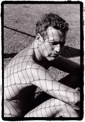 Paul Newman images Paul Newman wallpaper and background photos
