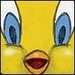 Tweety Bird Icon - tweety-bird icon