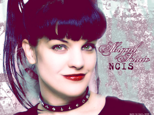 Abby Sciuto wallpaper entitled abby