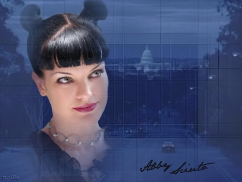 abby - ncis Wallpaper