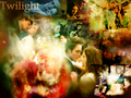 twilight-movie - edward bella love wallpaper