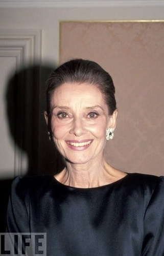 Audrey Hepburn wallpaper probably containing a portrait titled ASPCA 125th Anniversary Gala