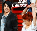 Adam and Alison - american-idol photo