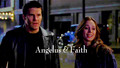 Angelus & Faith shipping