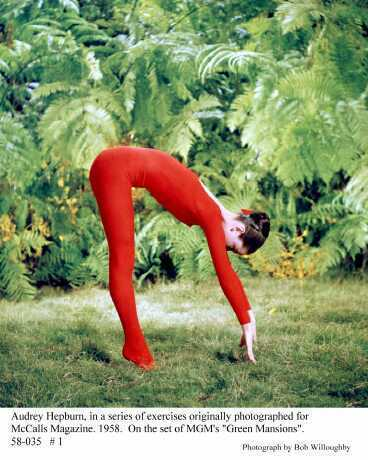 Audrey Hepburn wallpaper entitled Audrey - Yoga