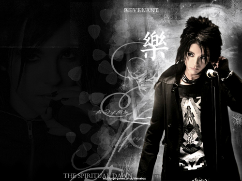 Bill Kaulitz wallpaper called Bill Wallpaper