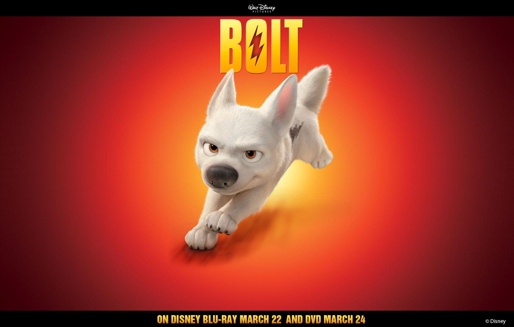 Bolt Solo Wallpaper Disney S Bolt Photo 5566700 HD Wallpapers Download Free Images Wallpaper [1000image.com]