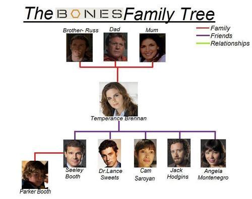 Bones Family arbre