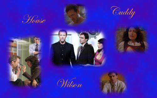 House/Cuddy/Wilson