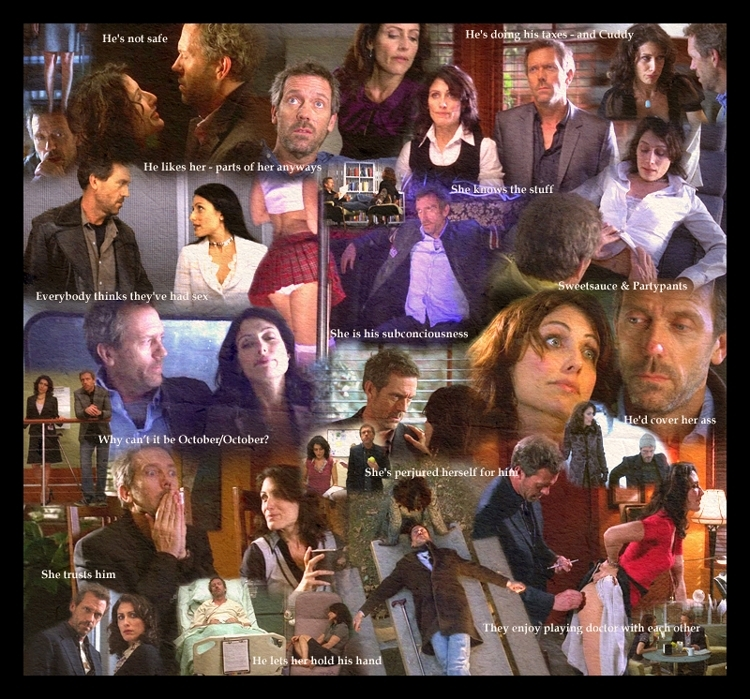 house and cuddy fanfiction sex