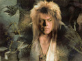 Jareth - labyrinth wallpaper