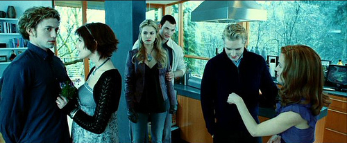 MEETING THE CULLENS