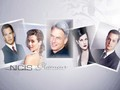 ncis - NCIS glamour wallpaper