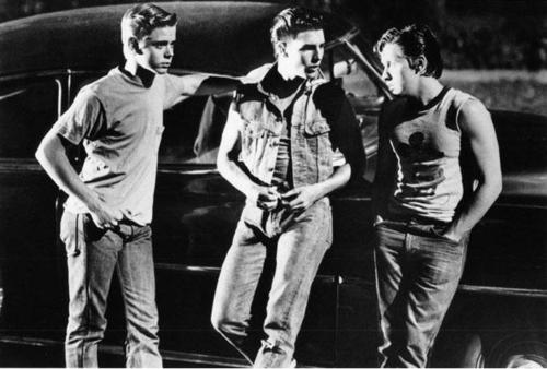 PONYBOY, STEVE, AND TWO-BIT