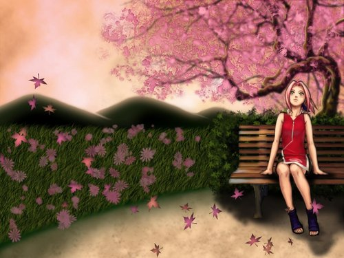 Haruno Sakura wallpaper probably containing a park bench and a bouquet called Sakura