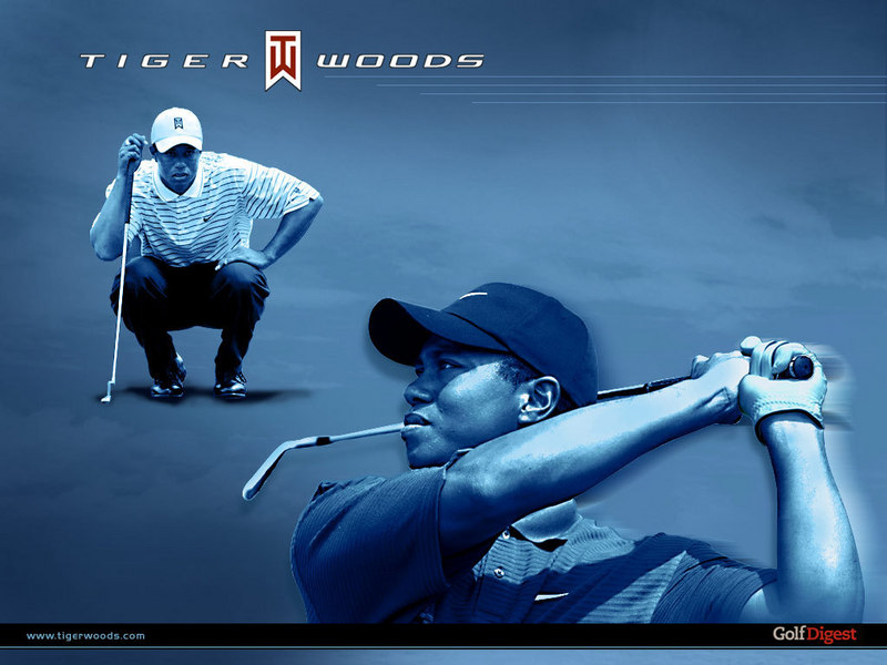 tiger woods logo. tiger woods logo wallpaper