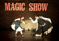 Top 8--Circus - american-idol photo