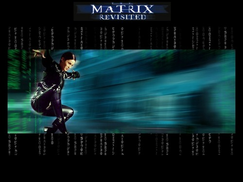 The Matrix wallpaper titled Trinity Matrix Wallpaper