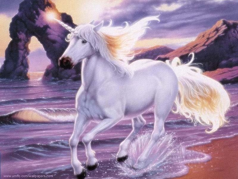 http://images2.fanpop.com/images/photos/5500000/Unicorn-unicorns ...