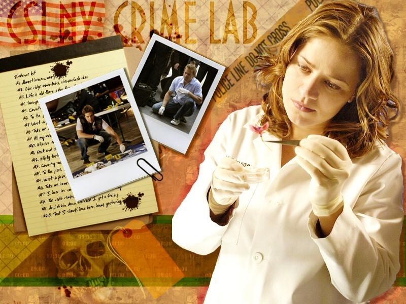 http://images2.fanpop.com/images/photos/5600000/CSI-NY-csi-ny-5653990-800-600.jpg