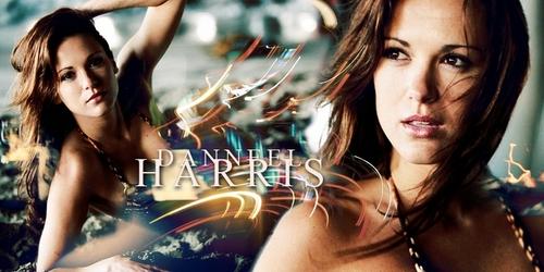 Daneel Harris banner
