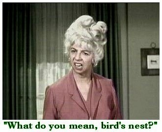 Gladys Kravitz - bewitched Photo