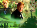 Horatio - csi-miami wallpaper